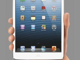 Will Physicians Embrace the iPad Mini