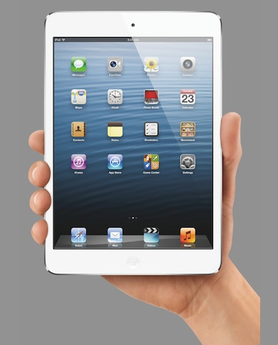 Will Physicians Embrace the iPad Mini?