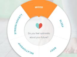 Mental Health Startup Latern