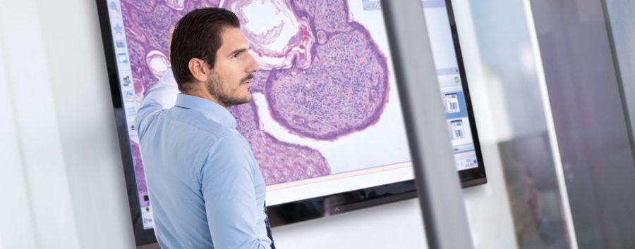 Philips Acquires Northern Irish Digital Pathology Startup PathXL
