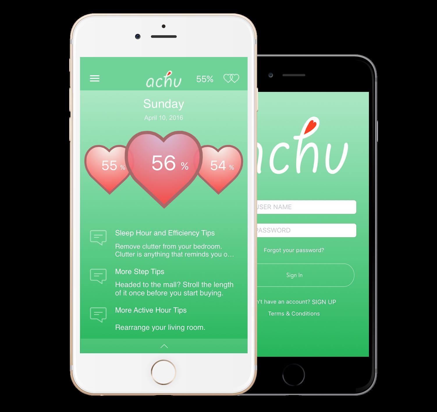 Achu App Fitbit Data