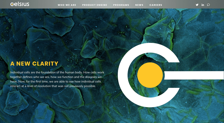 Celsius Therapeutics Launches with $65M to Develop Precision Therapeutics