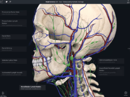 DrChrono Integrates 3D Anatomical Modeling in Mobile EHR for Physician Practices