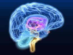 Mount Sinai Researchers Develop AI Platform to Detect Neurodegenerative Diseases