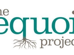 ONC Awards The Sequoia Project to Serve As Recognized Coordinating Entity to Support Interoperability