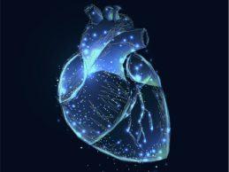 Fitbit, BMS-Pfizer Alliance Partner to Address Gaps in Atrial Fibrillation Detection