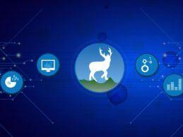 M&A: Cedar Gate Technologies Acquires Deerwalk to Enhance Value-Based Care Analytics