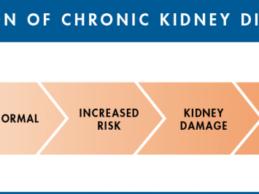 Chronic Kidney Disease (CKD) Native Americans Healthcare System