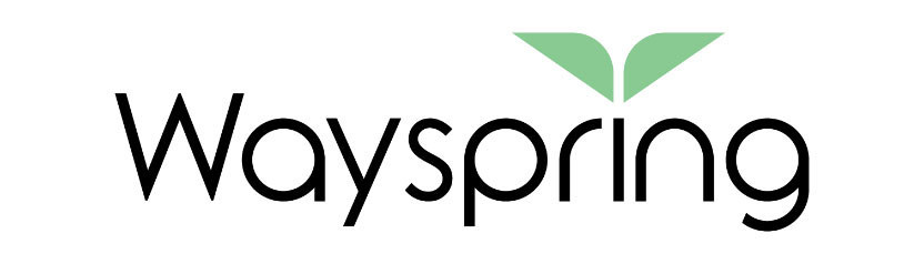 axialHealthcare Rebrands as Wayspring, Raises $75M for Value-Based Care Solution