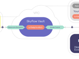Skyflow Secures $45M to Expand Health Data Privacy Vaults